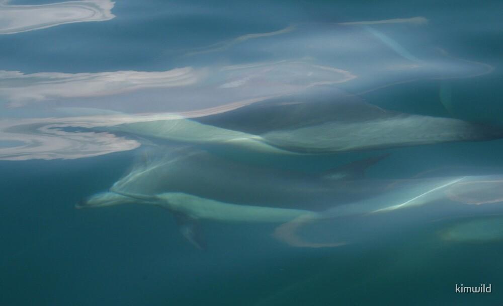 Underwater race by kimwild