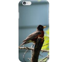 I'm singing my heart out...where are the cartoon mice and bunnies? iPhone Case/Skin