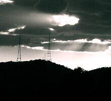 Aerial Silhouettes  by Matthew Stewart