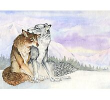 Arctic Werewolves Photographic Print
