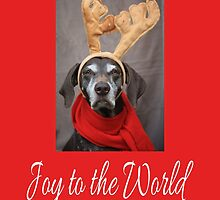 German Shorthaired Pointer reindeer by portosabbia