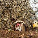 Gnome Home by Bevlea Ross
