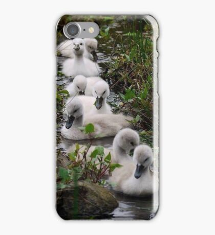 small ducks in a creeck iPhone Case/Skin