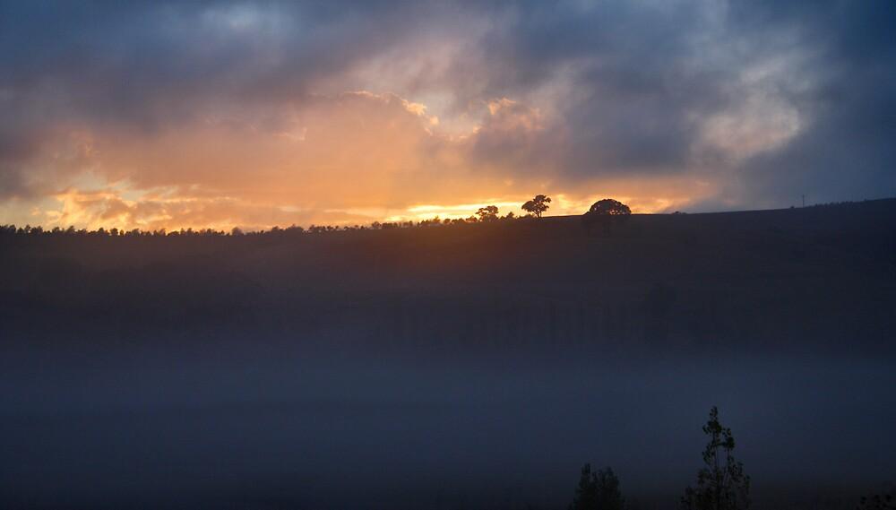 Hilltop sunrise by Nzaweird