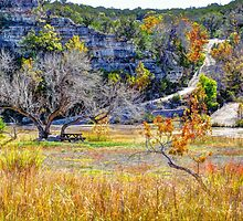 Hill Country by venny