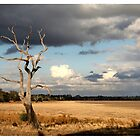 Lake Lonsdale by Kath Gillies