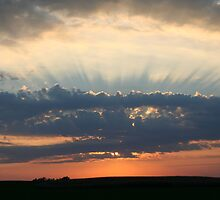 RAYS TO HEAVEN by amyh