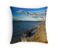 Lack of Water Throw Pillow