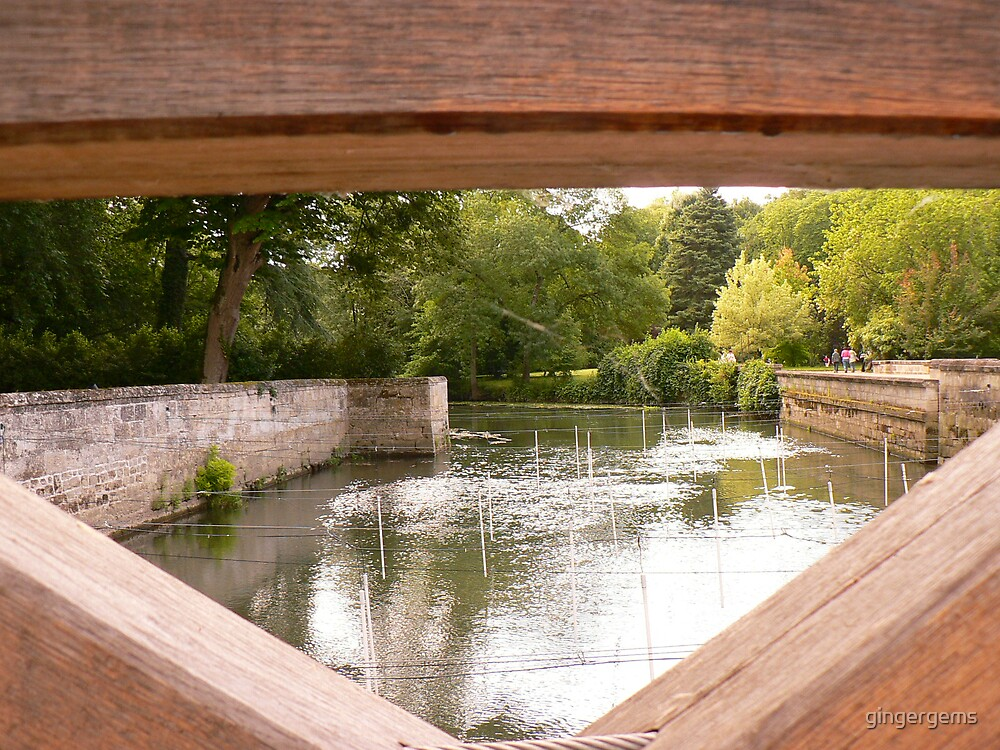 Bridge at a castle in Tours by gingergems