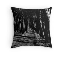 Footpath to St Cuthberts Cave in Northumberland............ Throw Pillow