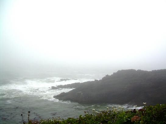 Sea Mist by bevg54
