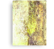 Midnight VI Canvas Print