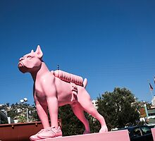 The Pink Woof by Andrew Gregor