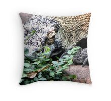 Laying Low Throw Pillow