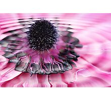 water flower Photographic Print