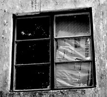 window by Evania