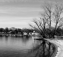 Tenney Park Shoreline by Maximillian Wasinger