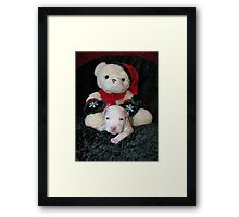 Is It Christmas Yet ? Framed Print