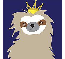 Royal Sloth Photographic Print