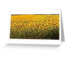 land of a thousand suns Greeting Card