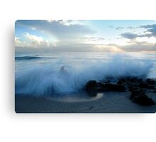 A Frenzy Made in Bliss Canvas Print