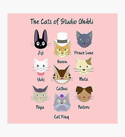 cats of ghibli's Photographic Print