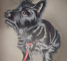 Ted the terrier by Karie-Ann Cooper