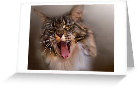 Yawning Gremlin by Claudia Reitmeier