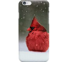 A Ruby In The Snow iPhone Case/Skin