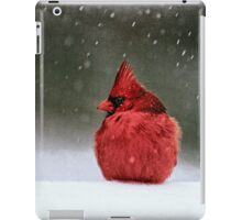 A Ruby In The Snow iPad Case/Skin