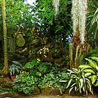 Ott's Exotic Greenhouse in Schwenksville - Pennsylvania - USA by MotherNature2