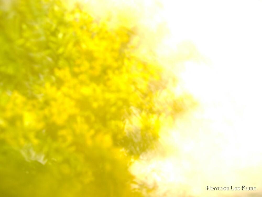 A Yellow World by Hermosa Lee Kwan