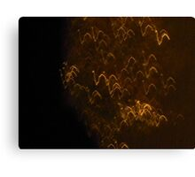 Rain Dance Turkeys Canvas Print