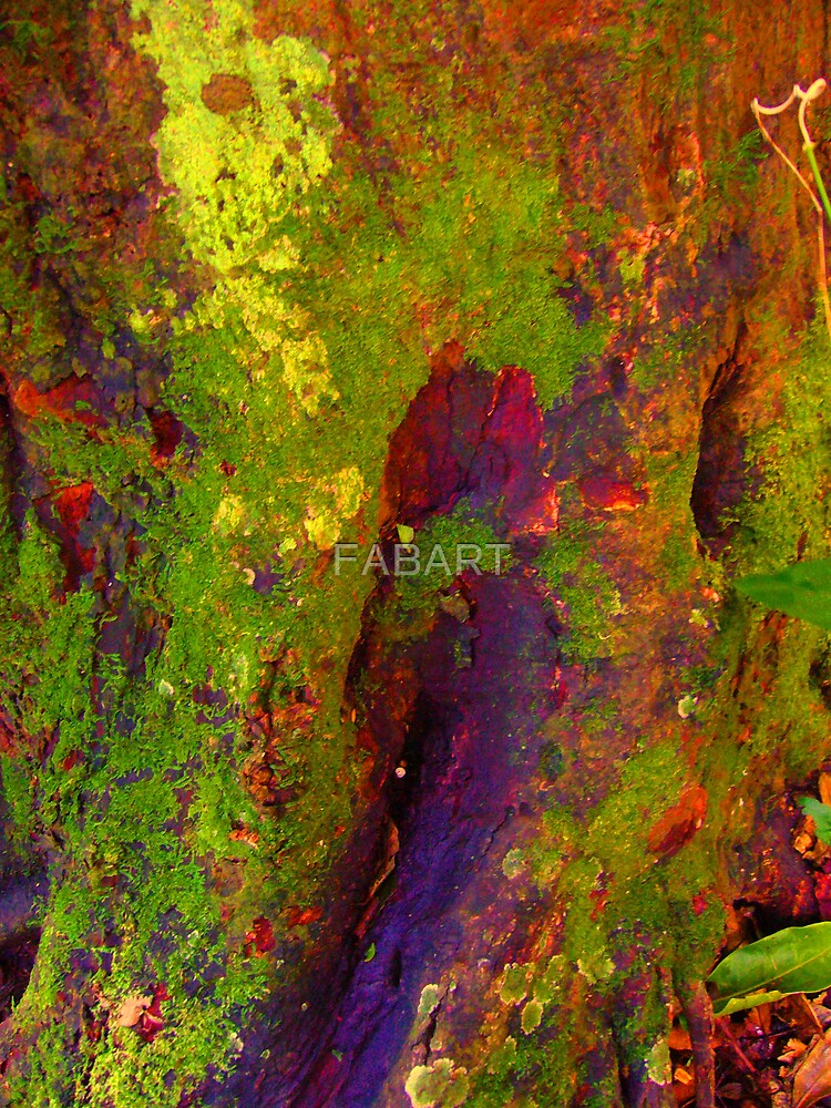 Tree Stump #6 by FABART