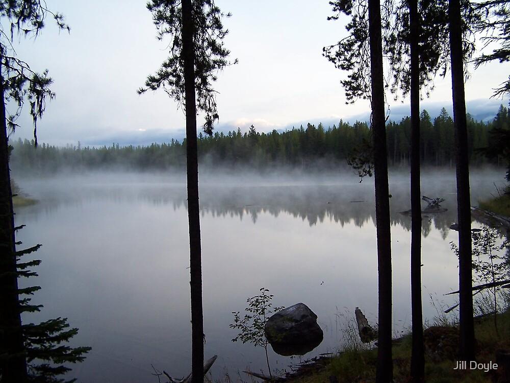 Misty Morning by Jill Doyle