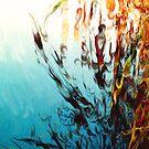 Barwon River Geelong by Casey Herman