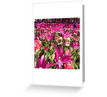 Flower Garden, Madison Square Park Greeting Card