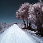 Infrared 05 by Nick Alpin