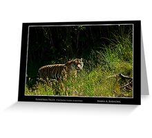 Sumatran Female Tiger - Cool Stuff Greeting Card
