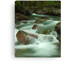 Avalanche Creek, Glacier NP Canvas Print
