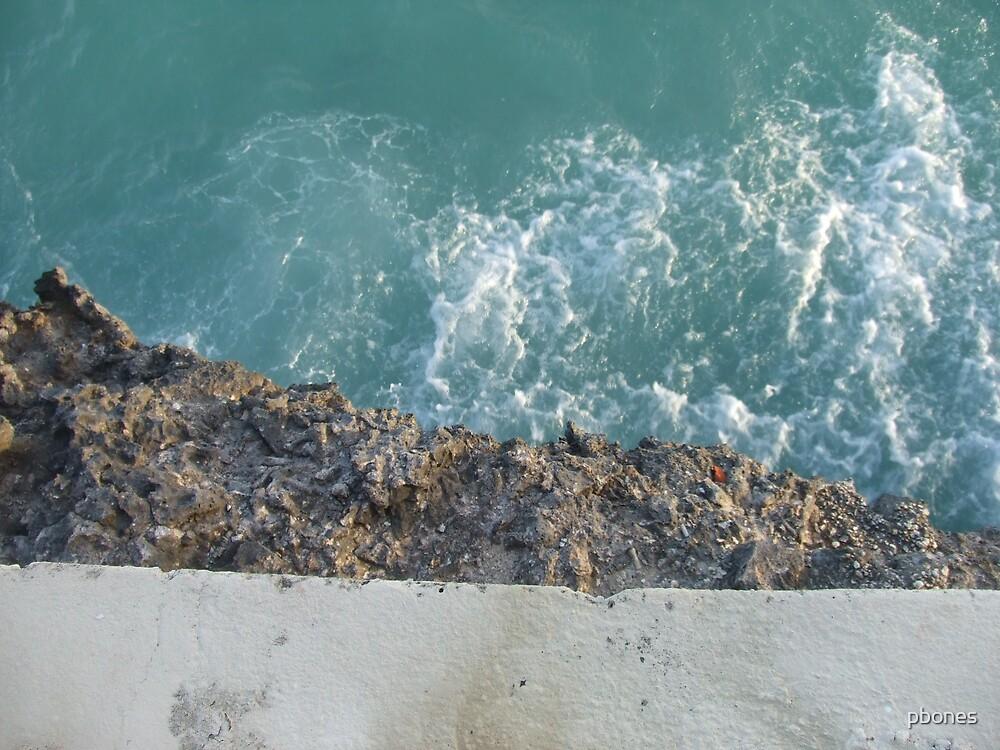 Reef by pbones