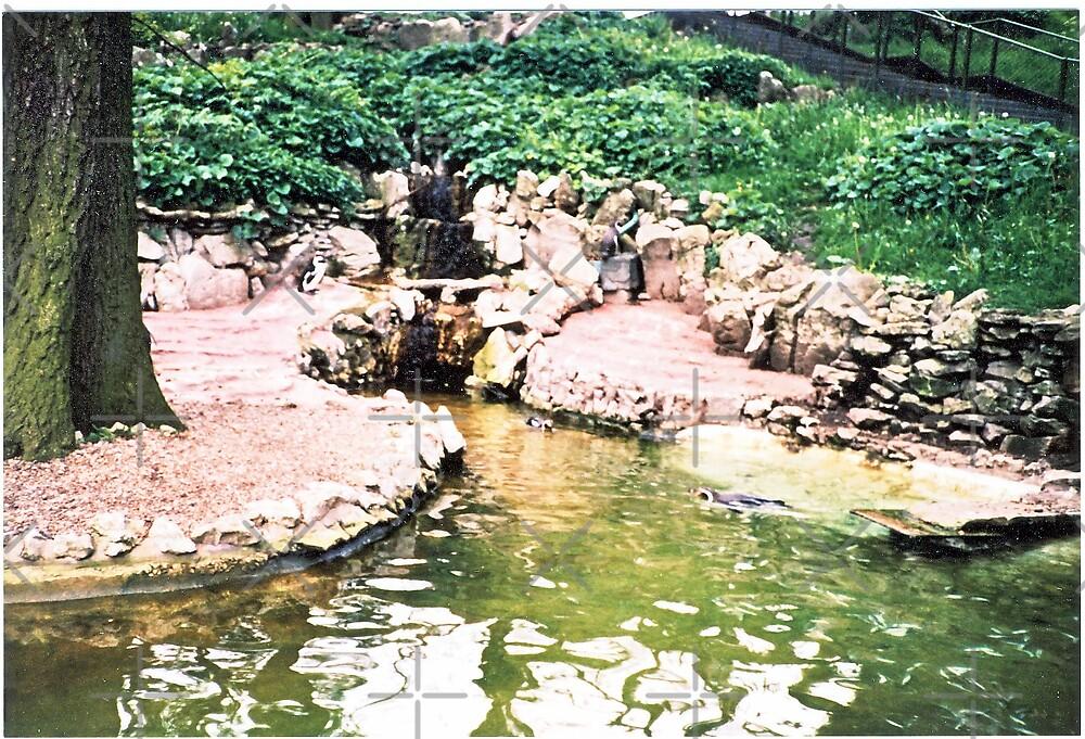 The Hippo Pond by jembystarlight