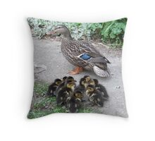 Down  the Garden Path Throw Pillow