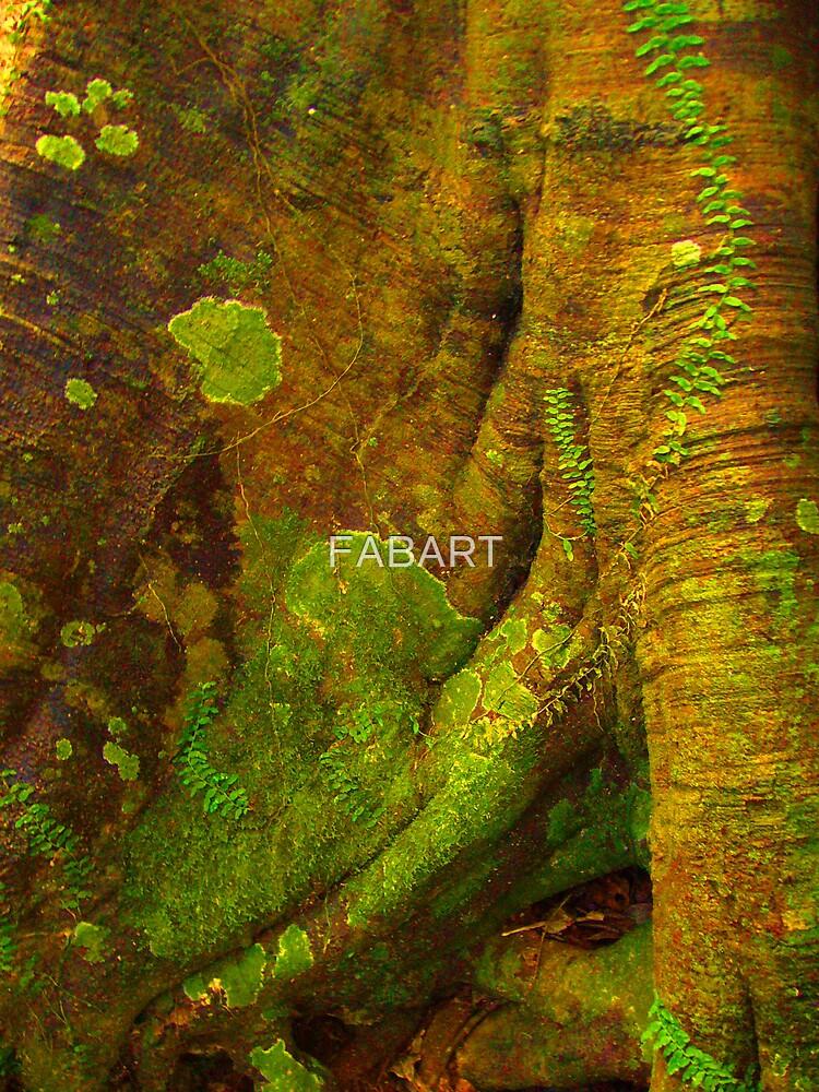 Tree Stump #4 by FABART