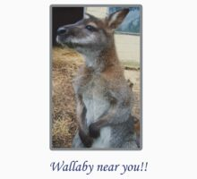 Wallaby near you!! by Tanya Housham