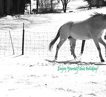 Paso Fino Grey White Horse Running in The Snow by CrissyAnderson