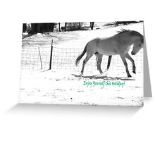Paso Fino Grey White Horse Running in The Snow Greeting Card