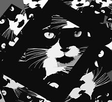 Cats Cutout by jenny meehan