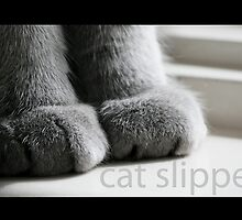 Cat Slippers by Sharon Hammond