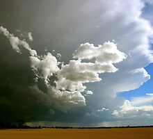 Get inside Ma...Storms a comin! by Michael  Bermingham